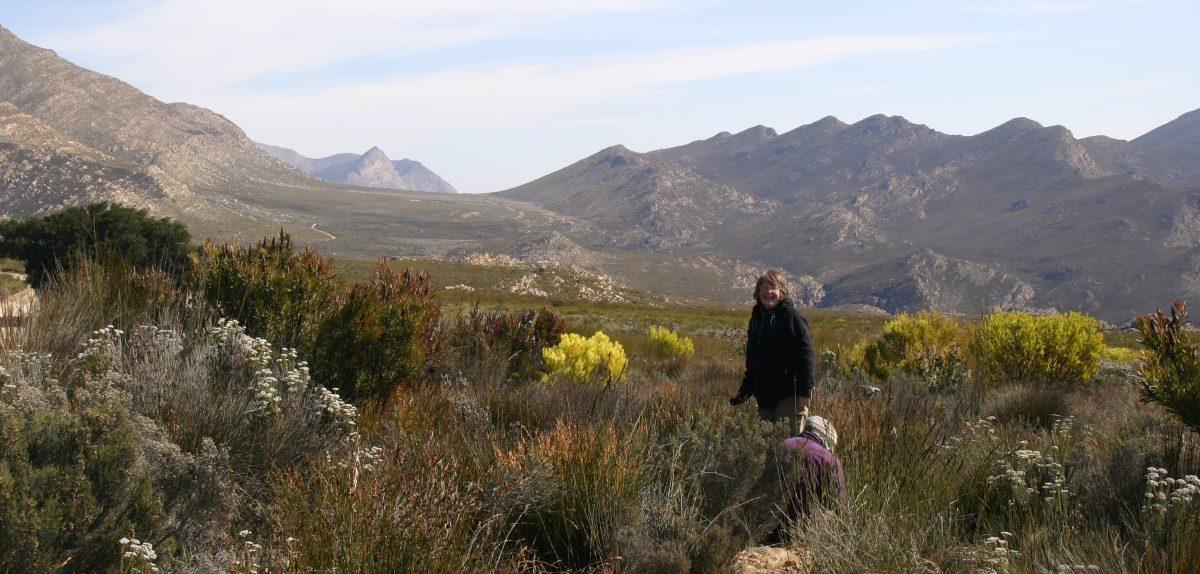 Field site Swartburg Mountains
